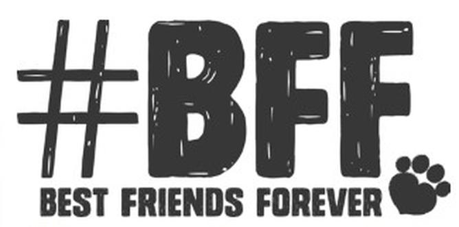 BFF nghĩa là gì?